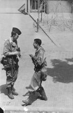Soldiers talking together during the Algerian War.