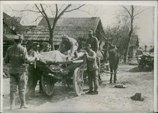 Soldiers loading a dead body on the cart in the village.