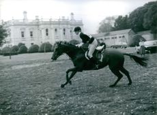 Princess Anne competing on her horse Naval Encounter, in the Army Horse Trials at Tidworth, 1980.