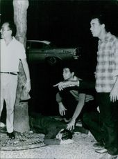Men looking at something and pointing with a man lying on the ground in Rio, 1964.