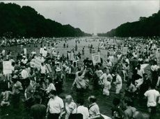 People protesting in Washington Monument and Reflecting Pool.