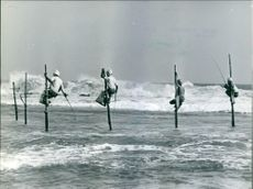 A photo of Fishermen on Stilts in Sri Lanka.