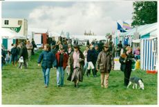 Crowds at blenheim today.