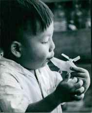 A little boy seen playing with his toy.