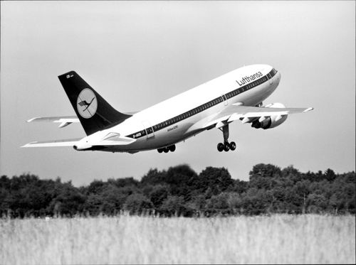 A plan of the Airbus A310 model is lifting.