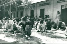 Vietnam, healthcare and education