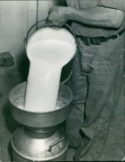 A man pouring white fluid in a container. Photo taken Oct 1940