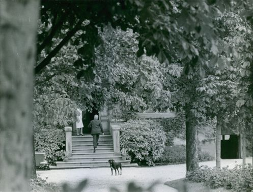 Antoine Pinay going up the stairs. 1965.