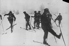 Soldiers standing on snow and skiing.
