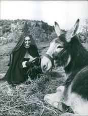 """Giovanna Ralli acting as a nun, and smiling while looking at a mule on the film by Rossellini.  """"Giovanna Ralli in a Rossellini film""""  1960"""