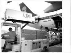 The cans with passenger meals are loaded on a Lufthansa Airbus A310.