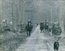 People riding on horses into the woods during election.