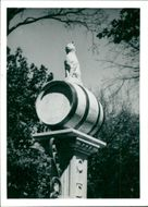 View of cat in the barrel statue.