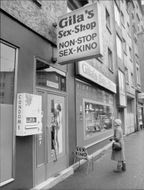 A sex store and cinema in Frankfurt