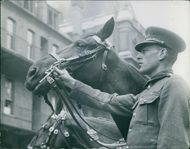The fine head of one of the jet black steeds of the household with its rider.1945