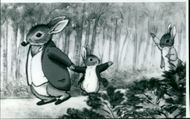 Peter Rabbit and benjamin bunny Tale by beatrix potter.