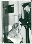 Pembroke Welsh Corgi Dog breed,Ticket Collector And His Pet Travel Together.
