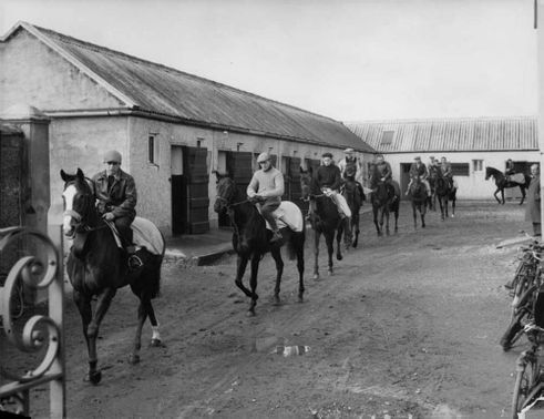 Paddy Prendergast's spring moves off on one of the four yards in which he keeps his horses.