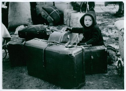 A child in Germany wearing a hood with luggages around him.