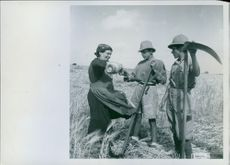 1942 Italian soldiers help the colonialists in Libya with the harvest during the Desert War.