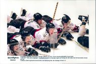 Picture from ice hockey match