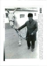 An unidentified worker 13 dec leads a lipizzaner horse out off its stable in order to evacuate the horses.