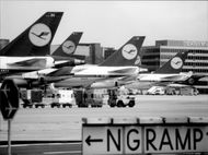 Lufthansa fleet at home base, airport in Frankfurt.