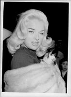 Portrait image of actress Diana Dors taken in an unknown context.