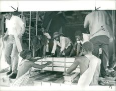 Zambian copper being unloaded from a Hercules C130 aircraft during Zambia Crisis 1965