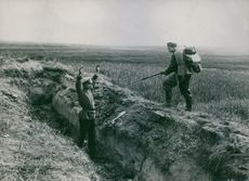 """""""Japarcoch dog""""  A soldier arrested hiding in an open bunker during the  summer of 1915"""
