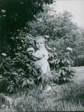 A little child standing in the garden.