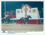 Jerry Bailey fits the finish line on his horse Singspiel at the World Cup Horse Race