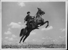 The cossacks are skilled riders and manage the most barky horses. - 1 April 1937