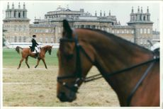 Blenheim International Horse Trials.