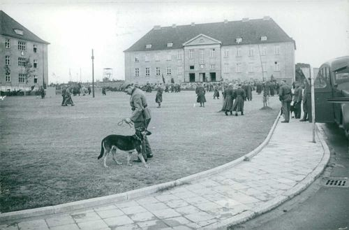 1000 Polish officer and polish prisoners in Germany, 1939.