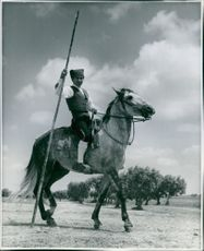 A bullfighter on his horse, Portugal