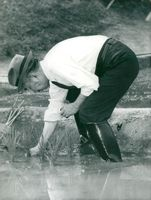 Emperor Hirohito in rubber boots crouched in rice fields participating in a ceremony around the rice planting