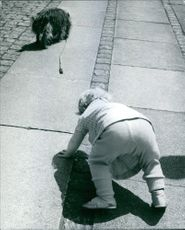 A child lost his balance right after he lose grip of the dog's leash.