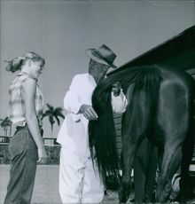 Man holding tail of horse and talking to a woman.