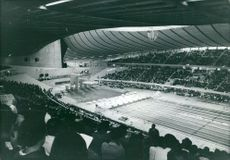 A whole lot of people gathered to see a match in a stadium.