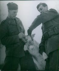 Two soldiers caught an animal and looking at it.