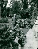 Maurice Chevalier in garden.