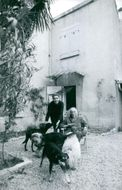 Jean David with his pet dogs.