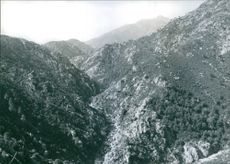 """A view of the famous """"Maquis"""" in Corsica, traditionally the retreat of political dissident and the hideout of Bandits."""