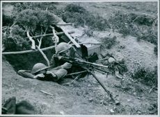 A bren gun outpost in the hills near Mateur. The men from battalion of the Royal West Kents. 1942