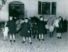 Children standing with their personal mule.