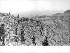 Algerian troops guarding boundaries in mountains; fighting against France for Algerian Independence.