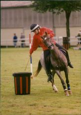 A rider in action in the Pony Club competition at the Norfolk Showground, Costessey.
