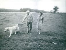 British Prime Minister Harold Wilson and his wife Mary taking a country stroll near their official country residence, Chequers. With them is their pet labrador Paddy.