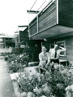 Sandviken, Bruket. Anna-Lisa Berglund and Nils Zetterberg in her flowering garden